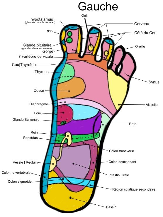 Los pies en el Síndrome triple a (allgrove)